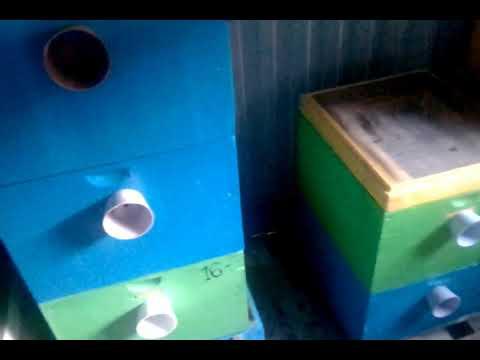 КАК СОХРАНИТЬ ЗОЛОТОЙ ЗАПАС ПЧЕЛОВОДА ОТ МОЛИ ??? от моли огневки и мышей . Beekeeping technology.