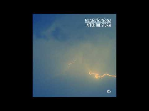 Tenderlonious ?– After The Storm (Full EP, 2020)