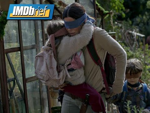 What You Missed in 'Bird Box' | IMDbrief