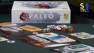 Spiel doch mal PALEO! - Brettspiel Rezension Meinung Test #351
