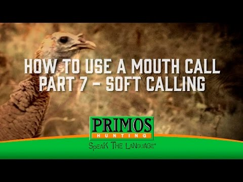 How to Use a Mouth Turkey Call Part 7 - Soft Calling video thumbnail