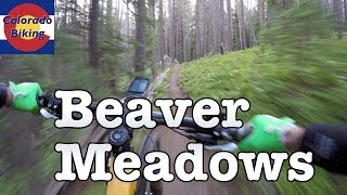 Overview of the entire Beaver Meadows system