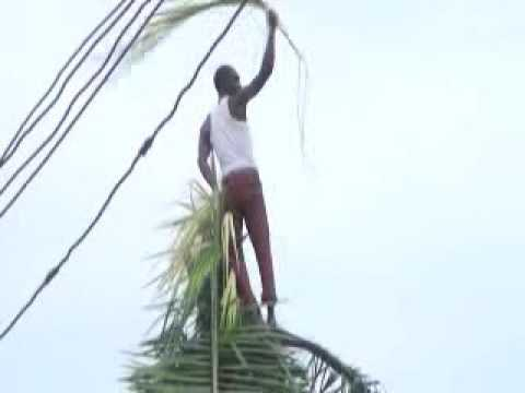 Igbo Tradition Ngerian Movie