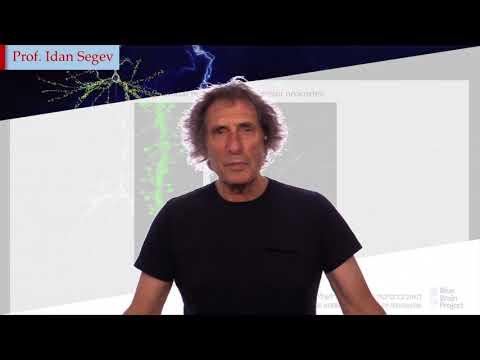 Simulation Neuroscience   EPFL on edX - YouTube