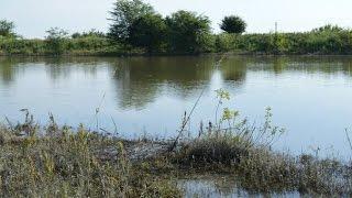 Рыбалка на каналах в краснодарском крае
