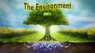 The Environment - Part 1, 5th Standard, Science, CBSE - Download this Video in MP3, M4A, WEBM, MP4, 3GP