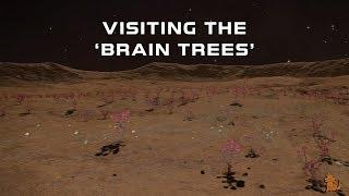 Elite:Dangerous - Visiting the Brain Trees.