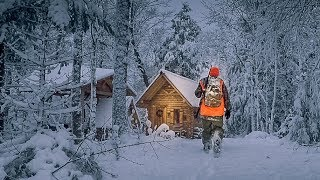What a Difference a Day Makes!   Off Grid Log Cabin Sauna Ep 9