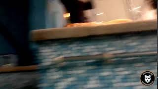 Piscine : on s'amuse au Dog Pool !