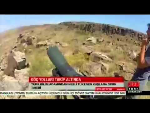 Tehlikedeki Kars-Iğdır Aras Kuş Cenneti'nin Afrika'ya Göç Eden Vericili Kuşları CNN Türk'de
