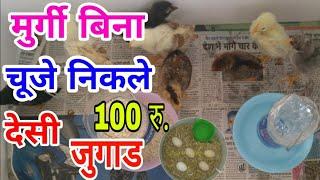 मुर्गी बिना चूजे निकले देसी जुगाड ! Make incubator for Rs 100