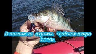 Отчеты о рыбалке на псковском озере
