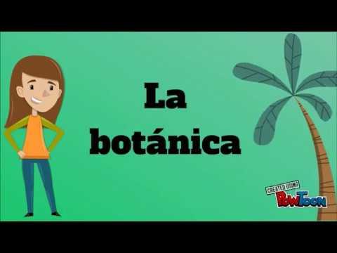 Botánica_7b_6