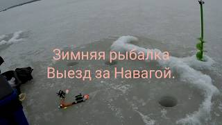 Зимней рыбалки приморский край