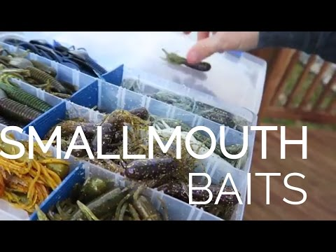 Top 5 Best Baits for BIG Smallmouth
