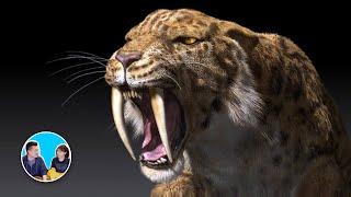 可怕的巨大史前生物,我們該慶幸它們已經滅絕了 | 老高與小茉 Mr & Mrs Gao