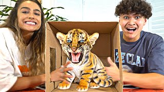 What's In The Box Challenge ft. SommerRay