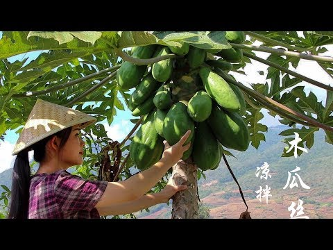 When papaya is ripe it is fruit. When it is raw you can cook. Have you ever eaten cold papaya?
