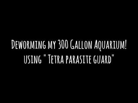 Anti parasite gamot