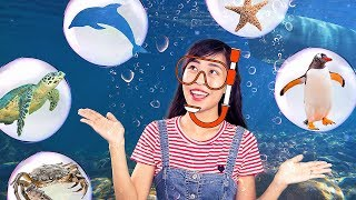 Exploring the ocean | Learn sea creatures in Vietnamese and English | Kim Happy Kids
