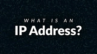 What is an IP Address? Everything You Need to Know