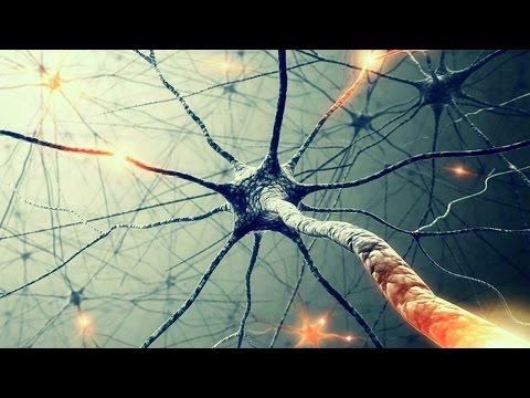 Тайны сознания. Бог в нейронах - [ Теория Всего от Athene ]