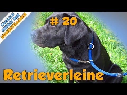 TGH 20 : Retrieverleine / Moxonleine / Schlupfleine