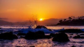 ocean sound effects with seagulls - 免费在线视频最佳电影电视节目