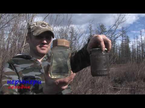 «Колмар» продолжает сброс угольной грязи в реки Южной Якутии. Видео