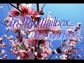 *Vidéo* : In My Mailbox #16