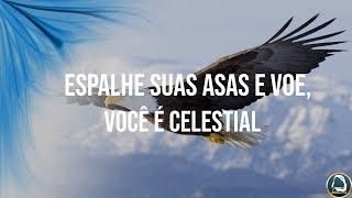 Espalhe suas asas e voe, você é celestial – 20/01/2019