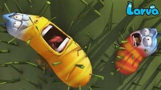 Larva Cartoon Full Movie 2019 | Wild Wild World, | Cartoons For Children