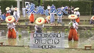 淡海をあるく お田植祭 多賀町