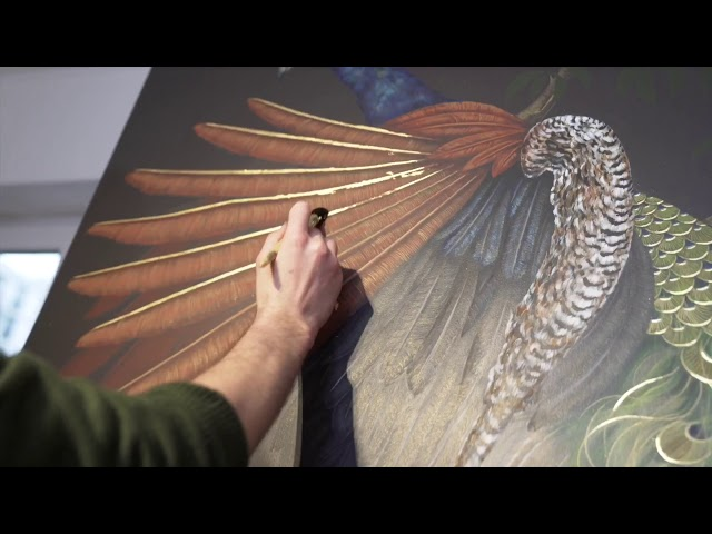 Peacock Project