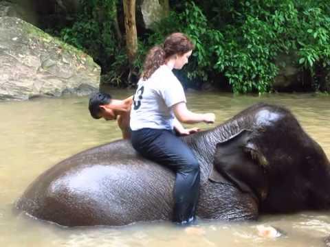CHIANG MAI, THAILAND - PATARA ELEPHANT FARM - BATHING