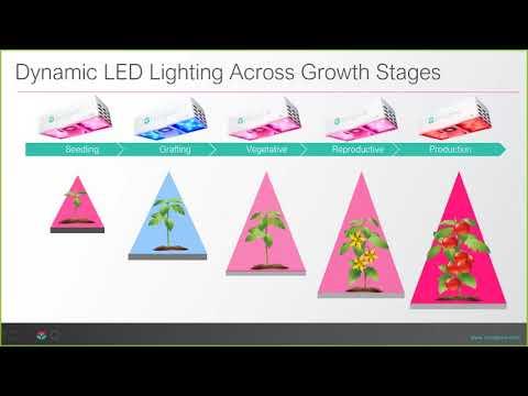 , title : '[Webinar] Learn How to Grow Vine Crops w/ LEDs