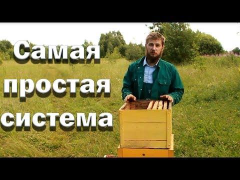 Самый простой метод пчеловождения!