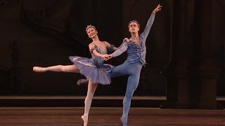 The Sleeping Beauty - Bluebird and Princess Florine pas de deux (The Royal Ballet)