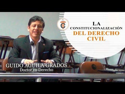 LA CONSTITUCIONALIZACIÓN DEL DERECHO CIVIL - Tribuna Constitucional 103 -Guido Aguila Grados