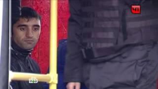 Полиция проверила ТЦ «Москва» иблизлежащие квартиры, сотни задержанных