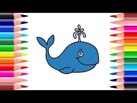 Cara Menggambar Dan Mewarnai Ikan Paus Untuk Anak Terbaru смотреть