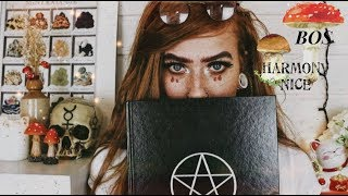 The Book of Shadows & How to start yours    Enchanted Endeavours EP.  17