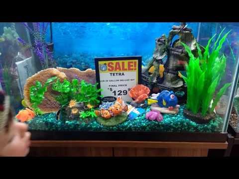 Shopping for Fish at Big Al's Aquarium Store!