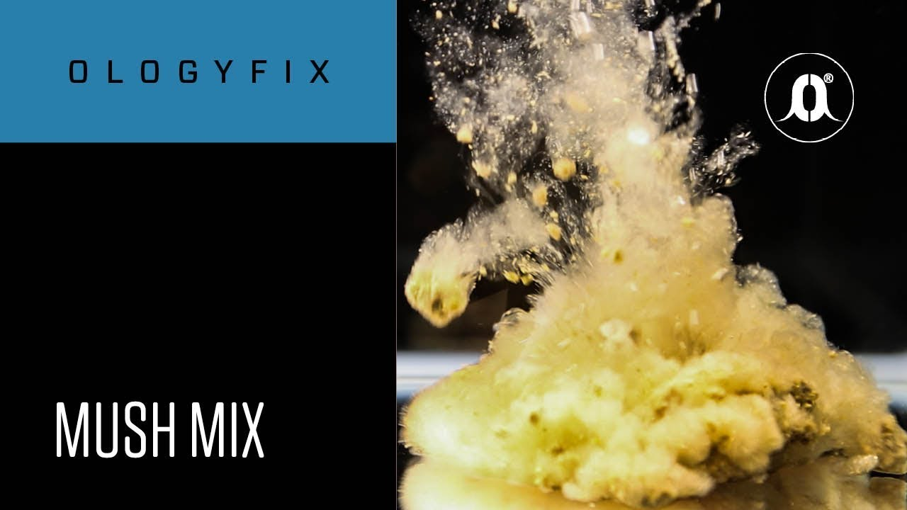 How to make a mush mix