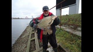 Рыбалка в крылатском на москва рекеров