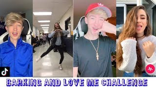 Top 10 Tiktok Musically Challenges || Barking And Love Me ||