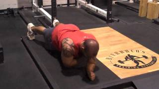 DeFrancosGym.com - Exercise Index: Plank shoulder touches