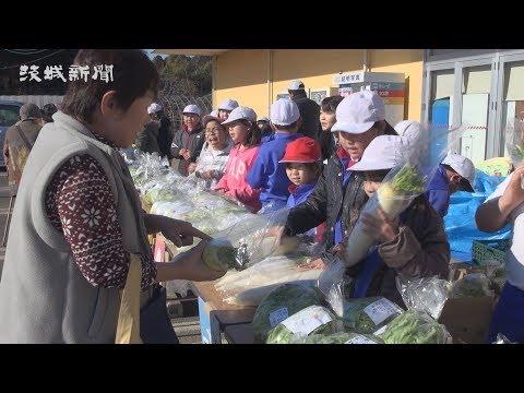 児童が野菜販売体験 鉾田北小