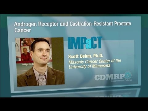 Vitaprost in infectious prostatitis