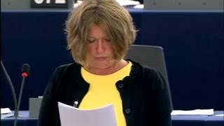 Felszólalás a terrorizmus vitában – Strasbourg 2015.07.08.